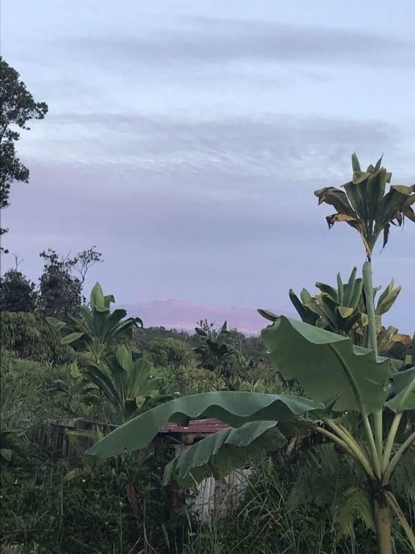 https://bt-photos.global.ssl.fastly.net/hawaii/orig_boomver_1_652796-2.jpg