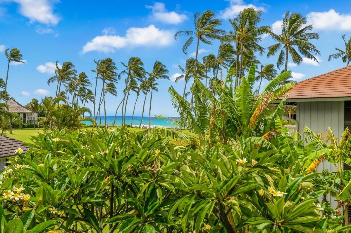 https://bt-photos.global.ssl.fastly.net/hawaii/orig_boomver_1_653000-2.jpg