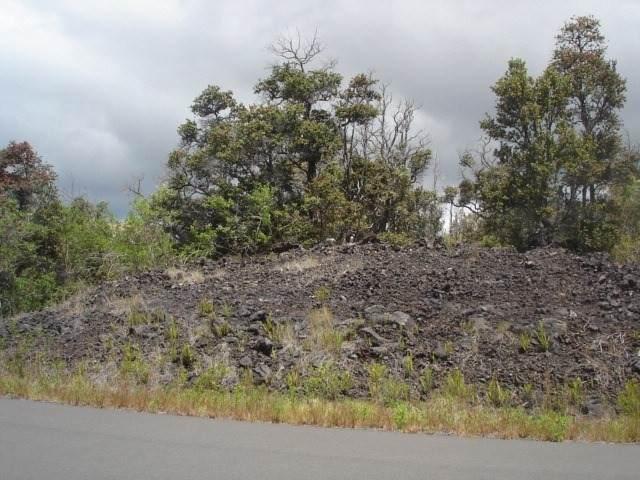 Hawaii Blvd - Photo 1