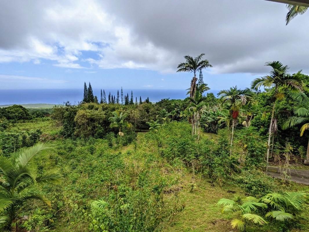 https://bt-photos.global.ssl.fastly.net/hawaii/orig_boomver_1_653066-2.jpg
