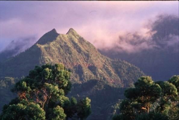 https://bt-photos.global.ssl.fastly.net/hawaii/orig_boomver_1_653105-2.jpg
