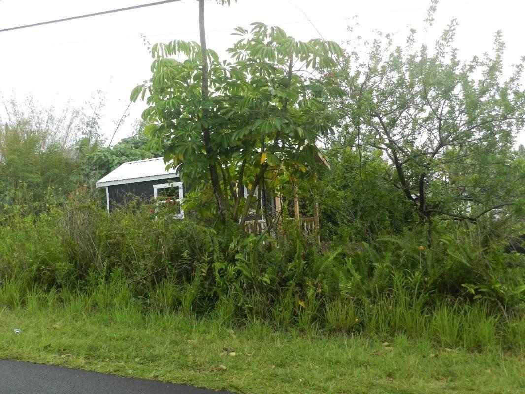 Mapuana Ave - Photo 1