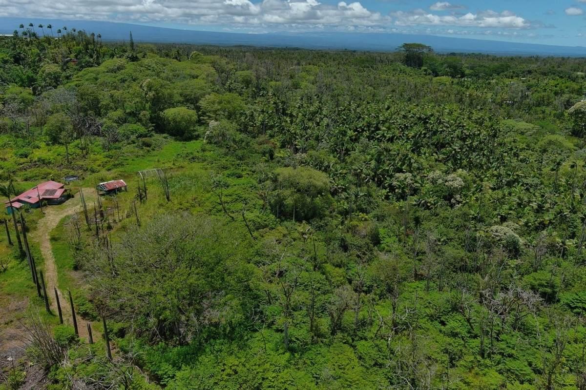 https://bt-photos.global.ssl.fastly.net/hawaii/orig_boomver_1_653312-2.jpg