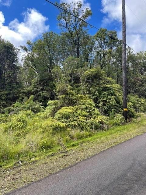 Ihope Rd, Mountain View, HI 96771 (MLS #653622) :: Aloha Kona Realty, Inc.