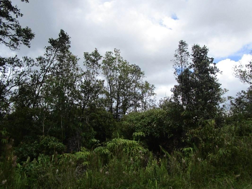 Ala Naulani Rd - Photo 1