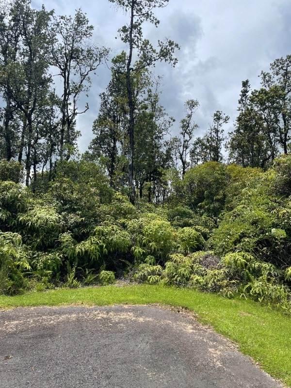 Meli Pl, Hilo, HI 96720 (MLS #653856) :: LUVA Real Estate