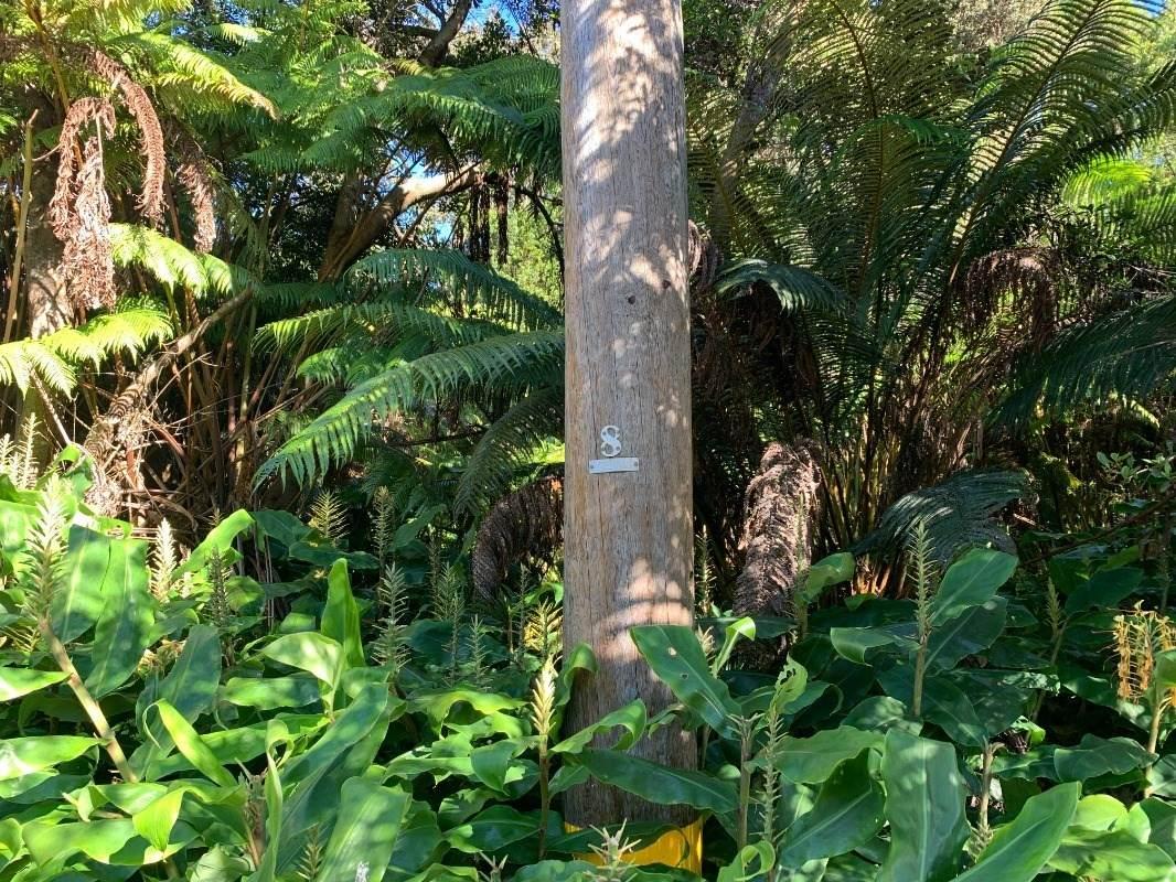 https://bt-photos.global.ssl.fastly.net/hawaii/orig_boomver_1_653875-2.jpg