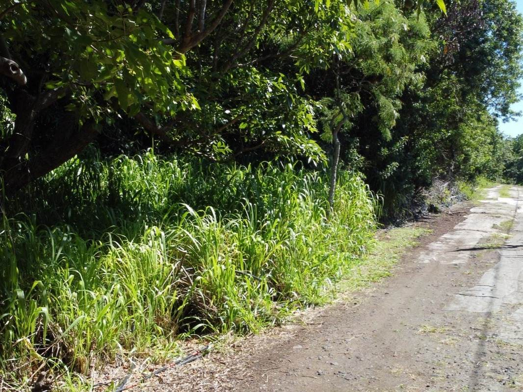https://bt-photos.global.ssl.fastly.net/hawaii/orig_boomver_1_653994-2.jpg