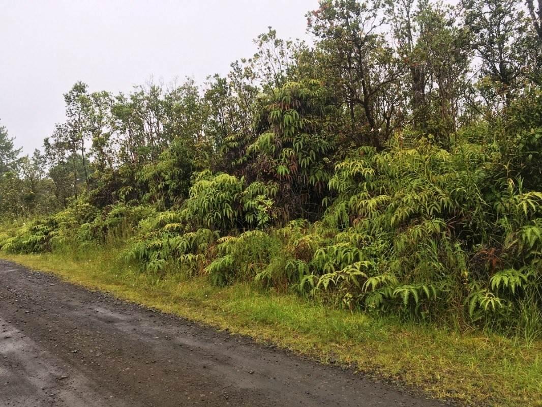 https://bt-photos.global.ssl.fastly.net/hawaii/orig_boomver_1_654000-2.jpg