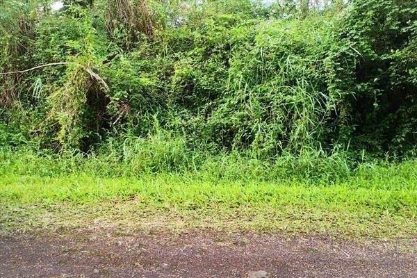 Niihau Rd, Pahoa, HI 96778 (MLS #654177) :: LUVA Real Estate