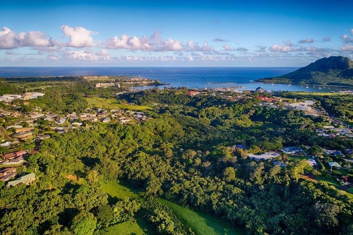 https://bt-photos.global.ssl.fastly.net/hawaii/orig_boomver_1_654355-2.jpg