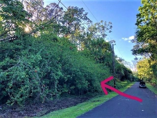 S Nenue St, Pahoa, HI 96778 (MLS #654362) :: LUVA Real Estate