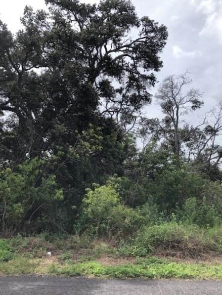 Luau Dr, Ocean View, HI 96737 (MLS #654392) :: Iokua Real Estate, Inc.