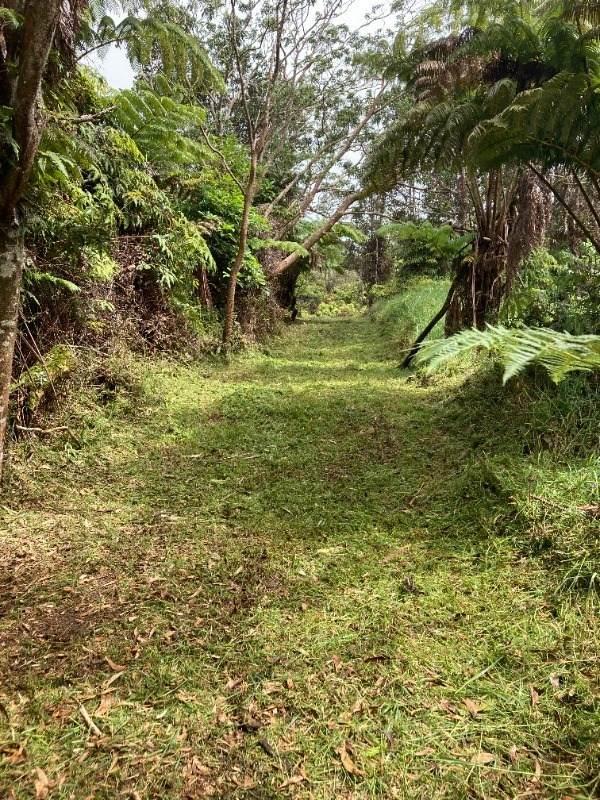 Pa Alii St, Volcano, HI 96785 (MLS #654518) :: Aloha Kona Realty, Inc.