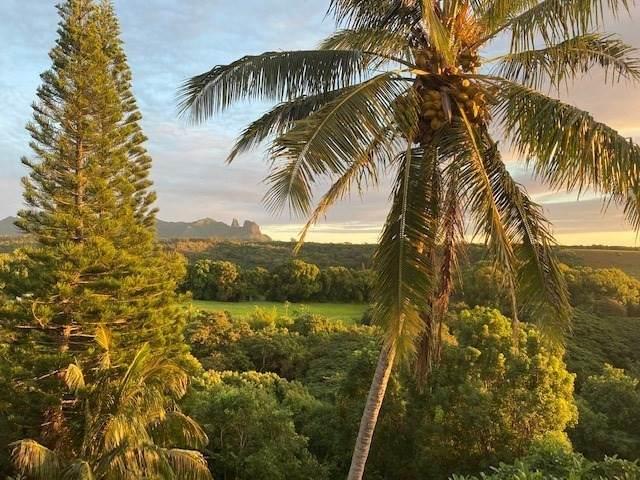 5340 Kumole St, Kapaa, HI 96746 (MLS #654581) :: Kauai Exclusive Realty