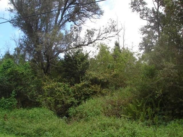 Lehua Lane, Ocean View, HI 96737 (MLS #654647) :: Iokua Real Estate, Inc.