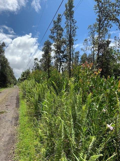 Ao Rd (Road 2), Mountain View, HI 96771 (MLS #654973) :: Aloha Kona Realty, Inc.