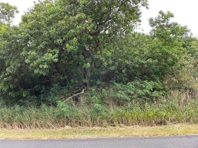 Kaulua Cir, Naalehu, HI 96772 (MLS #655099) :: Iokua Real Estate, Inc.