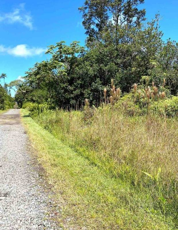 Road 11 (Pulelehua), Kurtistown, HI 96760 (MLS #655112) :: Aloha Kona Realty, Inc.