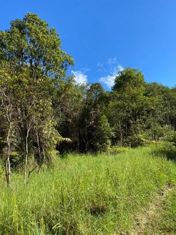 Kokokahi Rd, Volcano, HI 96785 (MLS #655186) :: LUVA Real Estate