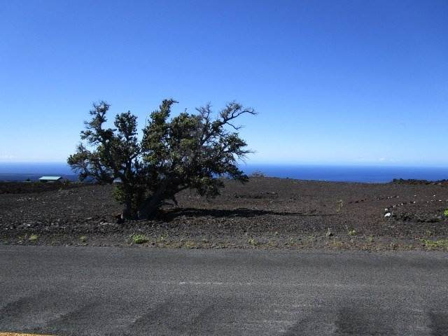 Hibiscus Dr, Ocean View, HI 96737 (MLS #655219) :: Aloha Kona Realty, Inc.