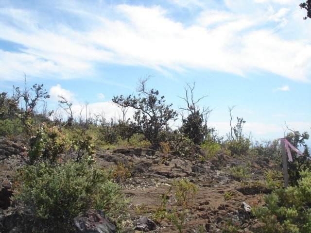 Poinciana Dr, Ocean View, HI 96737 (MLS #655245) :: Hawai'i Life