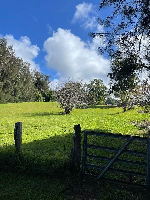 46-3761 Hawaii Belt Road, Honokaa, HI 96727 (MLS #655269) :: LUVA Real Estate