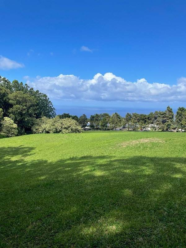 Address Not Published, Honokaa, HI 96727 (MLS #655270) :: LUVA Real Estate