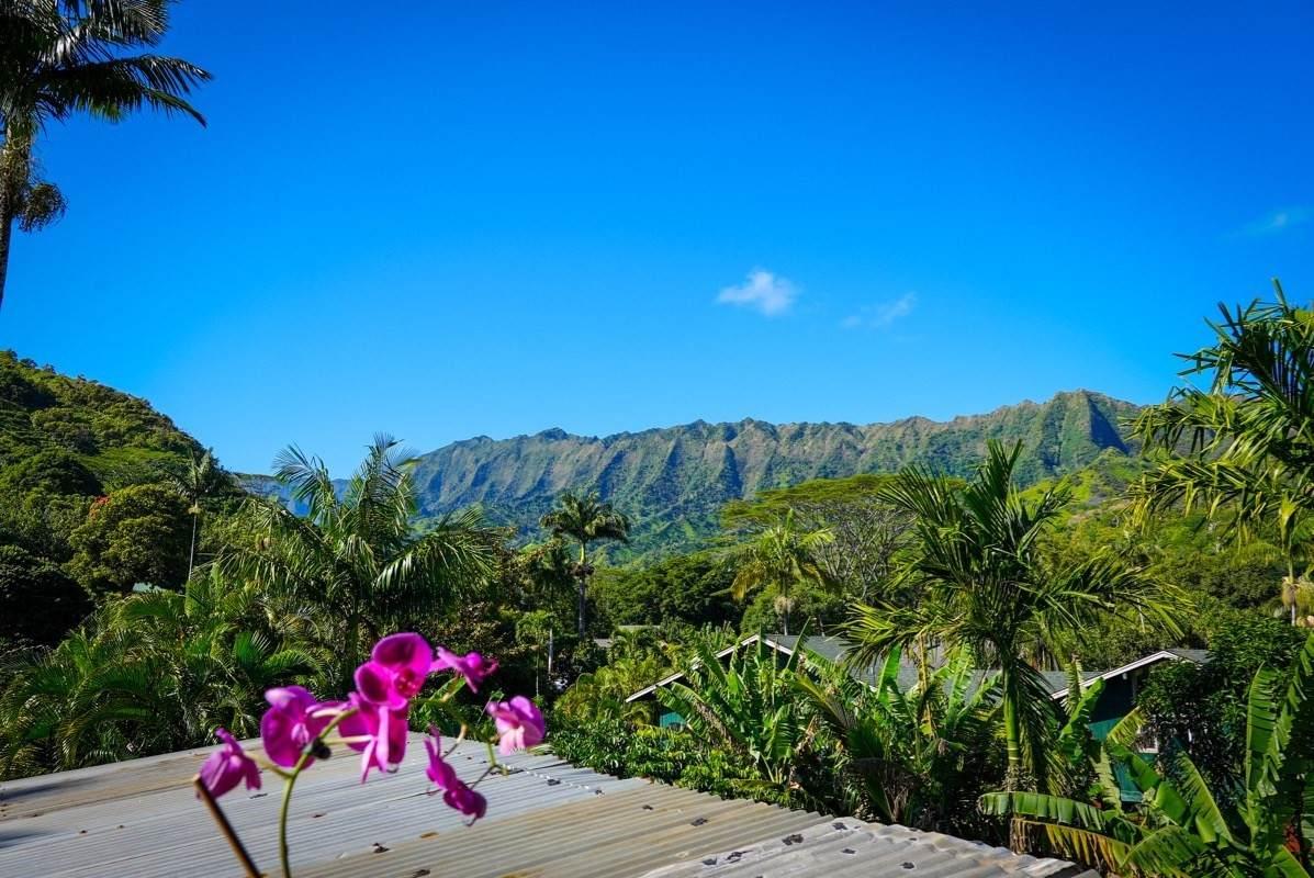 https://bt-photos.global.ssl.fastly.net/hawaii/orig_boomver_24_643192-2.jpg