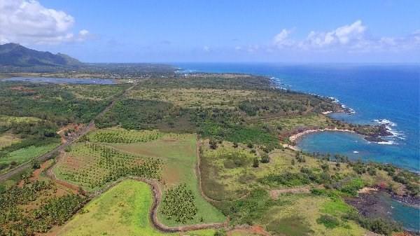 Address Not Published, Kealia, HI 96751 (MLS #293846) :: Elite Pacific Properties