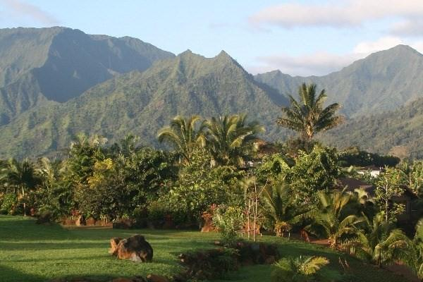 3840 Ahonui Pl, Princeville, HI 96722 (MLS #602256) :: Aloha Kona Realty, Inc.