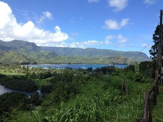 5219 Hanalei Plantation Rd, Hanalei, HI 96714 (MLS #603135) :: Kauai Exclusive Realty