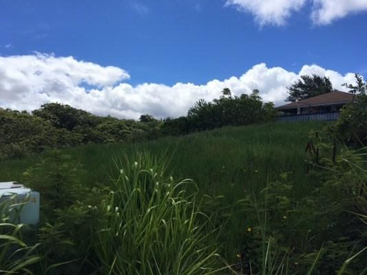 5492 Puulima Rd, Kalaheo, HI 96741 (MLS #608305) :: Elite Pacific Properties