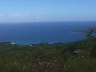 Jacaranda Heights, Captain Cook, HI 96704 (MLS #612912) :: Elite Pacific Properties