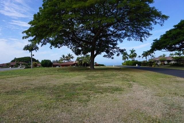 Address Not Published, Kailua-Kona, HI 96740 (MLS #614726) :: Elite Pacific Properties
