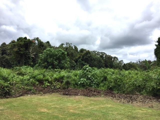62 Hale Manu Dr, Hilo, HI 96720 (MLS #619720) :: Aloha Kona Realty, Inc.