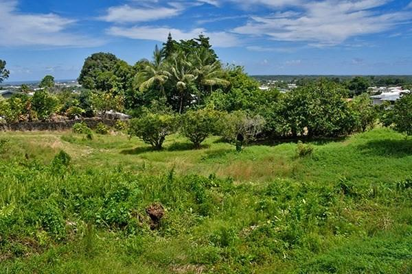 Kanoelani Street, Hilo, HI 96720 (MLS #620895) :: Oceanfront Sotheby's International Realty