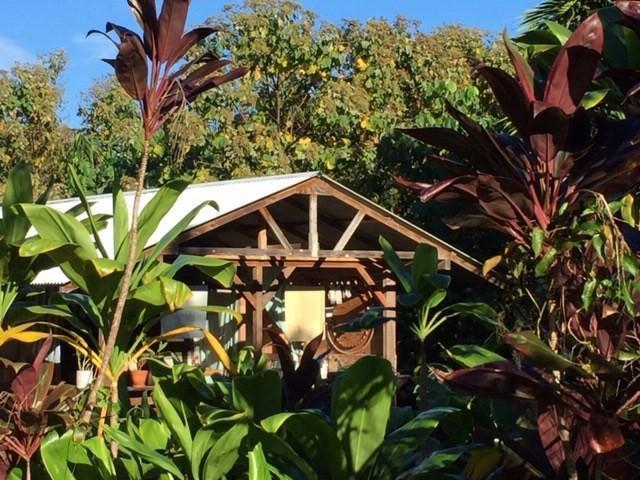 Government Beach Rd, Pahoa, HI 96778 (MLS #622051) :: Aloha Kona Realty, Inc.