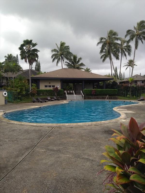 3920 Wyllie Rd, Princeville, HI 96722 (MLS #622987) :: Elite Pacific Properties
