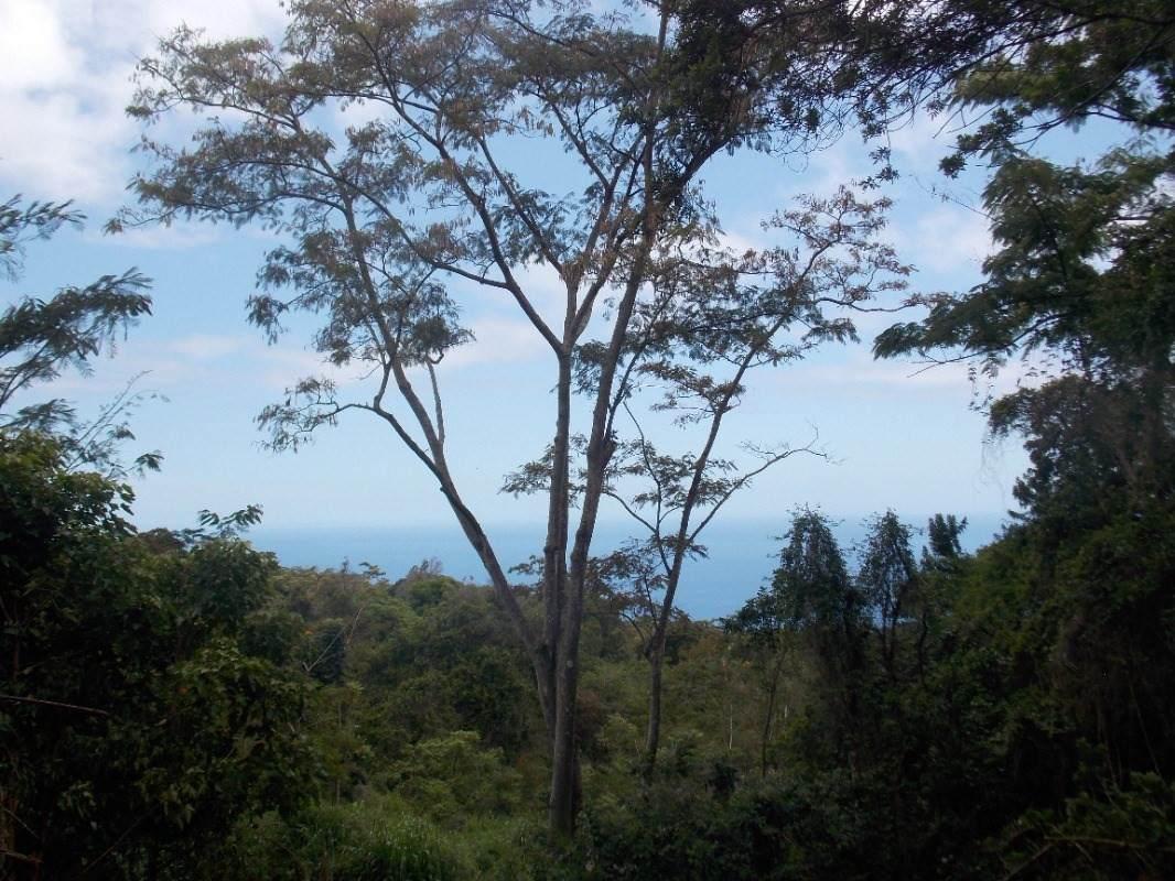 https://bt-photos.global.ssl.fastly.net/hawaii/orig_boomver_2_625154-2.jpg