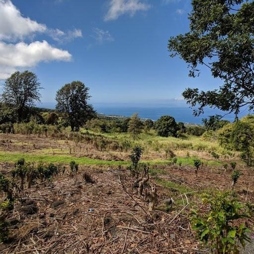 Address Not Published, Holualoa, HI 96725 (MLS #626768) :: Elite Pacific Properties