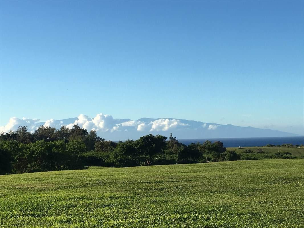 https://bt-photos.global.ssl.fastly.net/hawaii/orig_boomver_2_628705-2.jpg