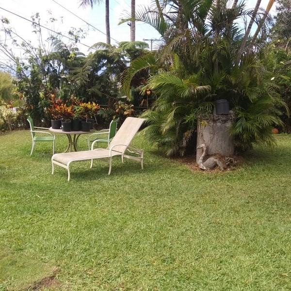 45-611 Mauna Loa St, Honokaa, HI 96727 (MLS #629028) :: Song Real Estate Team/Keller Williams Realty Kauai