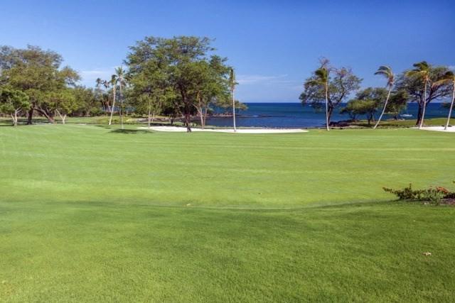 69-1542 Puako Beach Dr, Kamuela, HI 96743 (MLS #631041) :: Song Real Estate Team | LUVA Real Estate
