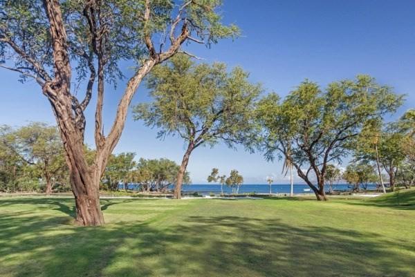 69-1544 Puako Beach Dr, Kamuela, HI 96743 (MLS #631042) :: Song Real Estate Team | LUVA Real Estate