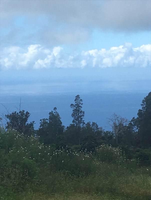 76-1302 Waiono Ranch Rd, Holualoa, HI 96725 (MLS #633765) :: Elite Pacific Properties
