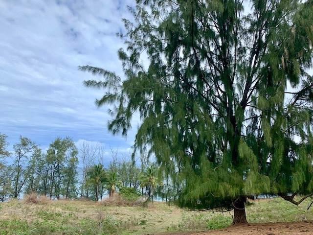 Paauhau Rd, Honokaa, HI 96727 (MLS #634466) :: Elite Pacific Properties