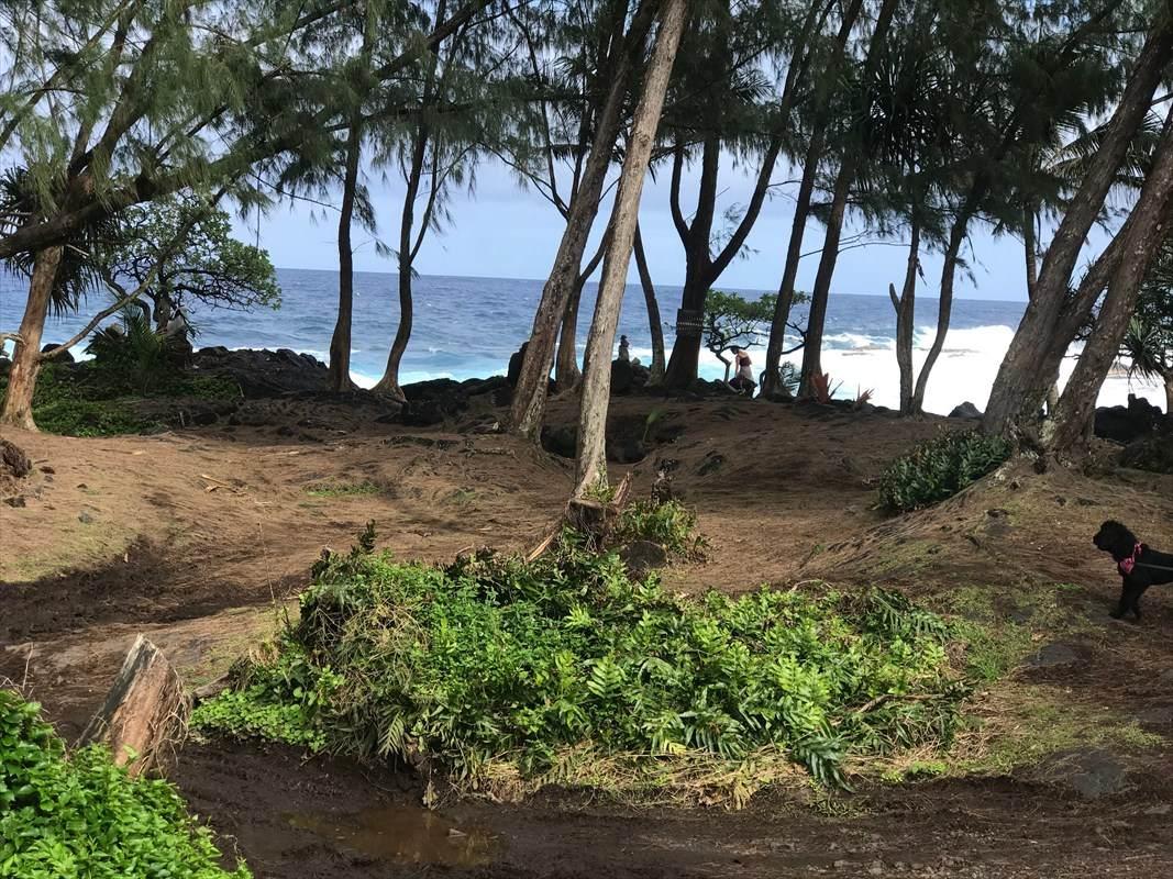https://bt-photos.global.ssl.fastly.net/hawaii/orig_boomver_1_637245-2.jpg