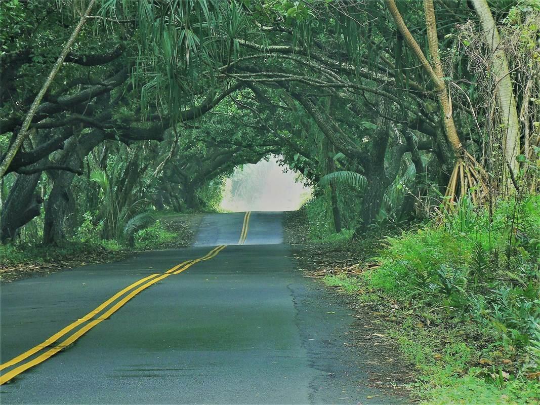 https://bt-photos.global.ssl.fastly.net/hawaii/orig_boomver_1_638088-2.jpg