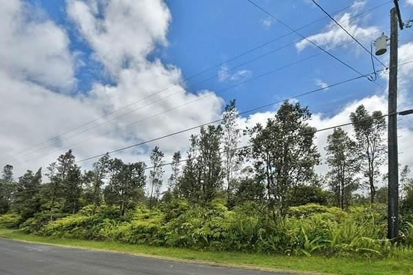 Hibiscus St, Mountain View, HI 96771 (MLS #639655) :: Elite Pacific Properties